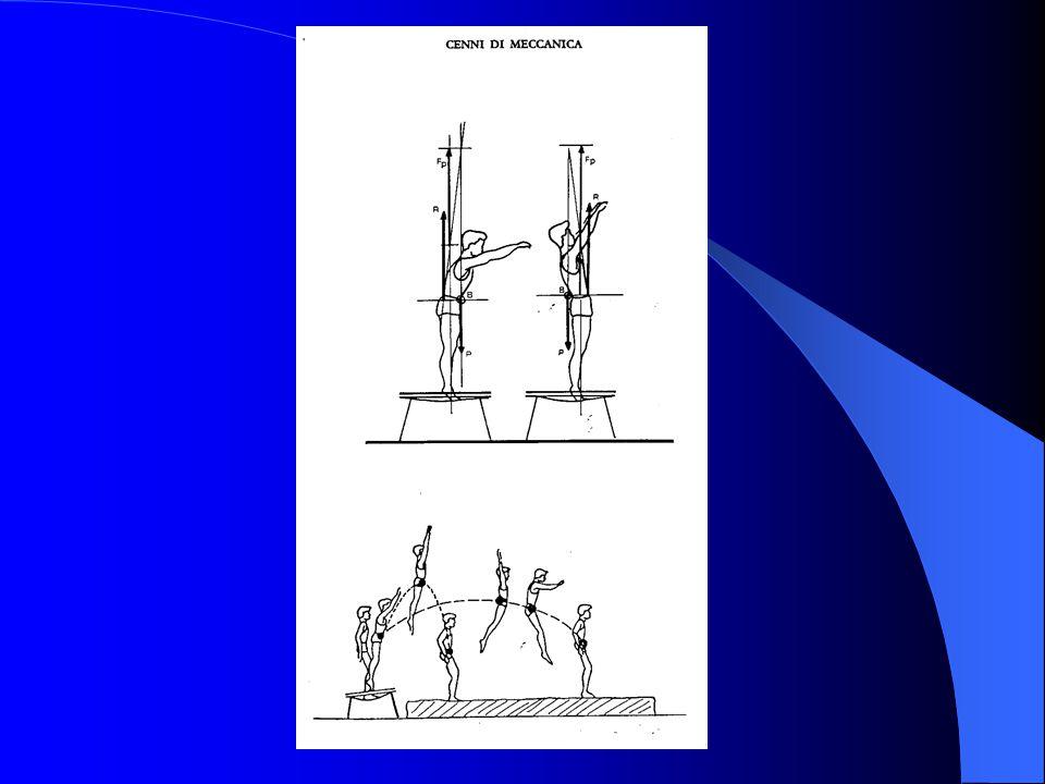 CONCLUSIONI In ginnastica artistica è fondamentale l'assimilazione tecnica dei movimenti più semplici prima di passare a gesti più complessi E' indisp