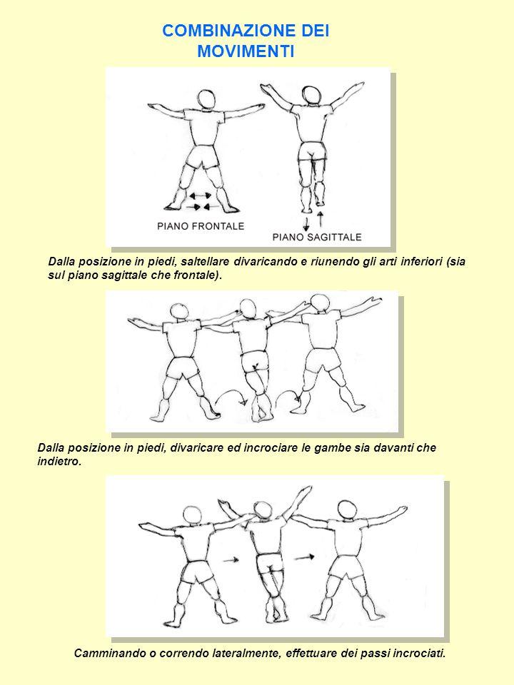 ESERCITAZIONI DIDATTICHE  Esercizi a corpo libero dalle varie posizioni.