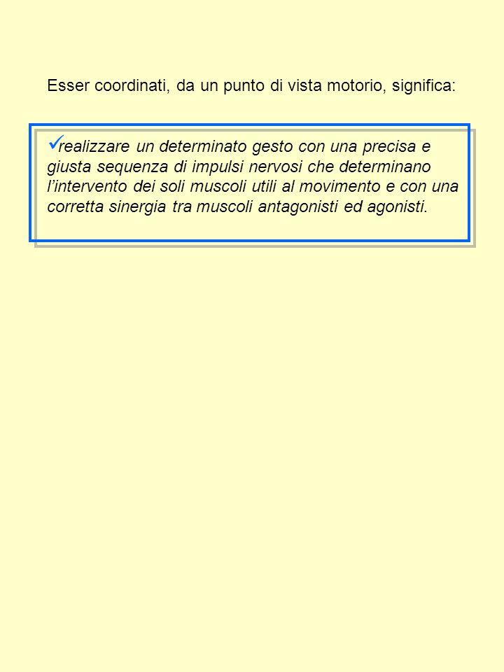ESERCIZI PER L'EQUILIBRIO Esercizi a corpo libero: -stazione eretta (bipodalica, monopodalica) -stazione ginocchio -stazione seduta -decubito laterale N.B.