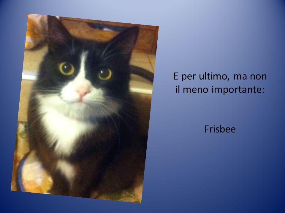E per ultimo, ma non il meno importante: Frisbee