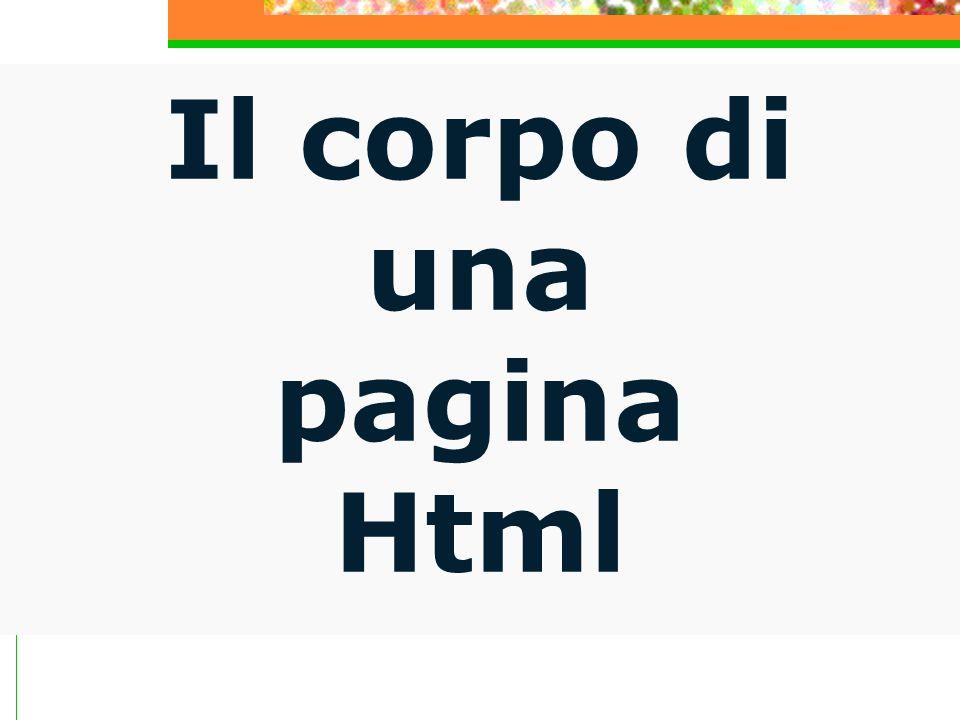 La sezione è il corpo principale del documento HTML dove vanno inseriti tutti i contenuti che devono apparire nella pagina web.