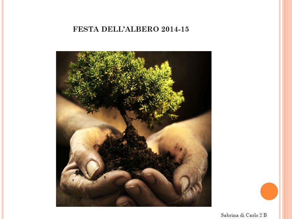 FESTA DELL'ALBERO 2014-15 Sabrina di Carlo 2 B