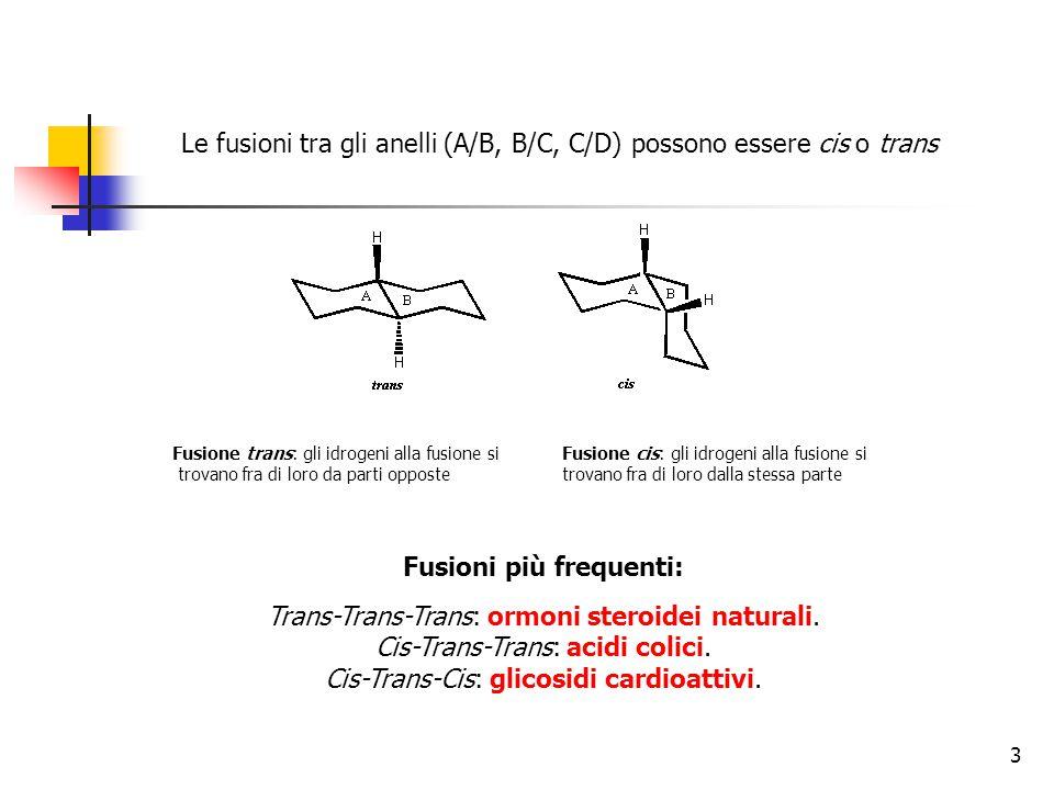 Le fusioni tra gli anelli (A/B, B/C, C/D) possono essere cis o trans Fusione trans: gli idrogeni alla fusione si trovano fra di loro da parti opposte Fusione cis: gli idrogeni alla fusione si trovano fra di loro dalla stessa parte Fusioni più frequenti: Trans-Trans-Trans: ormoni steroidei naturali.