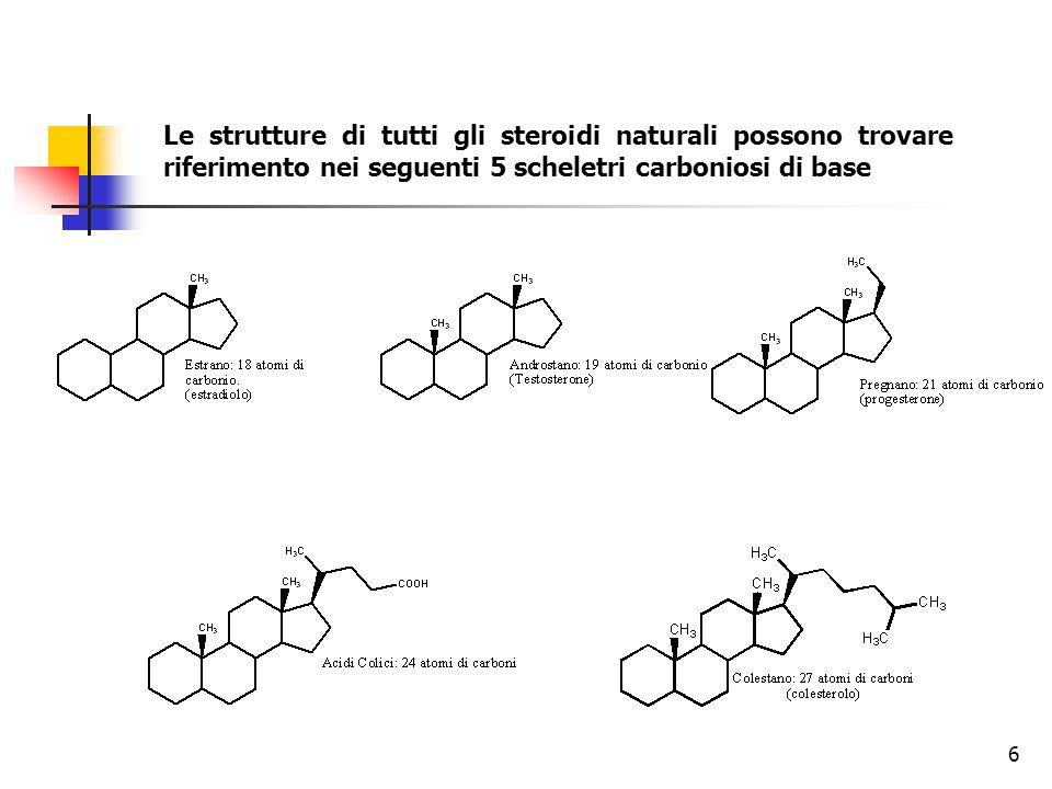 Le strutture di tutti gli steroidi naturali possono trovare riferimento nei seguenti 5 scheletri carboniosi di base 6