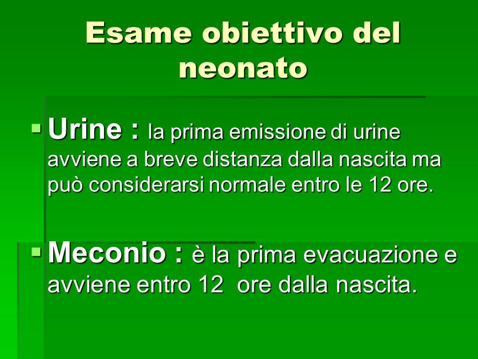 Esame obiettivo del neonato  Urine : la prima emissione di urine avviene a breve distanza dalla nascita ma può considerarsi normale entro le 12 ore.