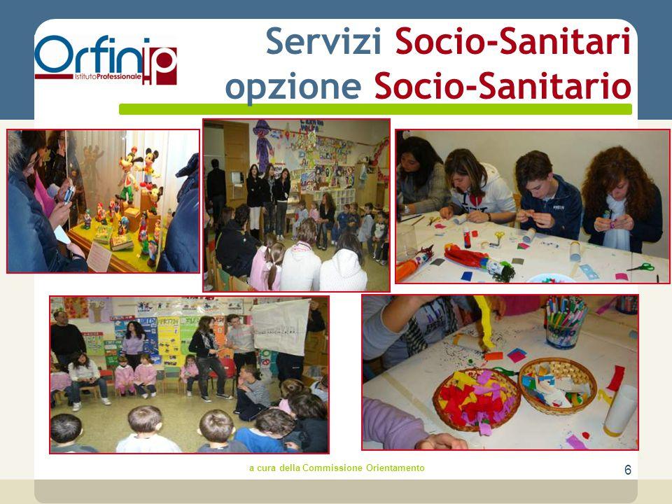 6 Servizi Socio-Sanitari opzione Socio-Sanitario a cura della Commissione Orientamento