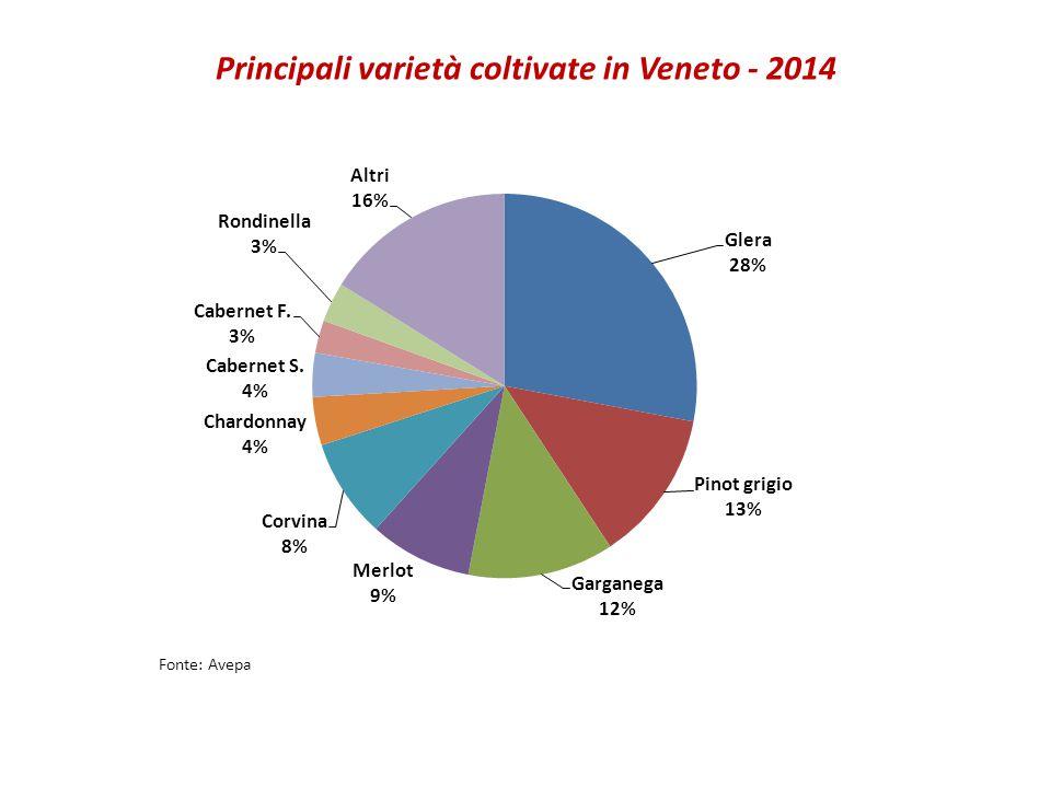 Principali varietà coltivate in Veneto - 2014