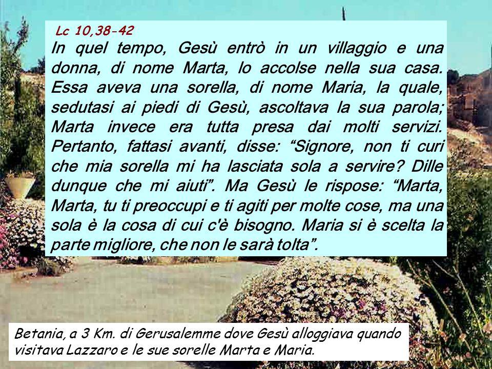 ALLELUIA Lc 8,15 Beati coloro che custodiscono la parola di Dio in un cuore buono e sincero, e portano frutto con perseveranza.
