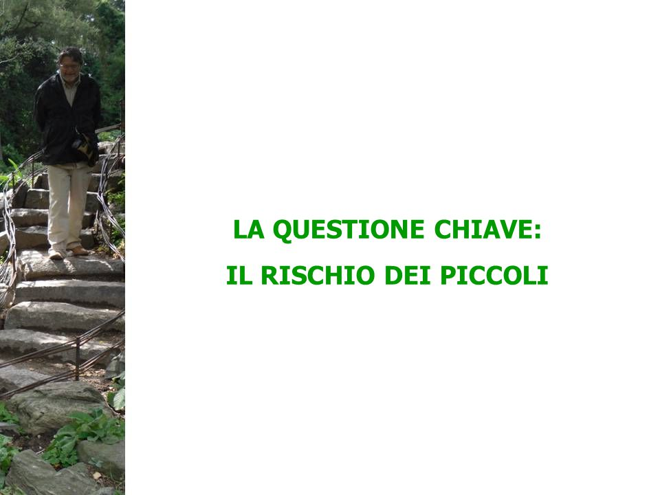 LA QUESTIONE CHIAVE: IL RISCHIO DEI PICCOLI