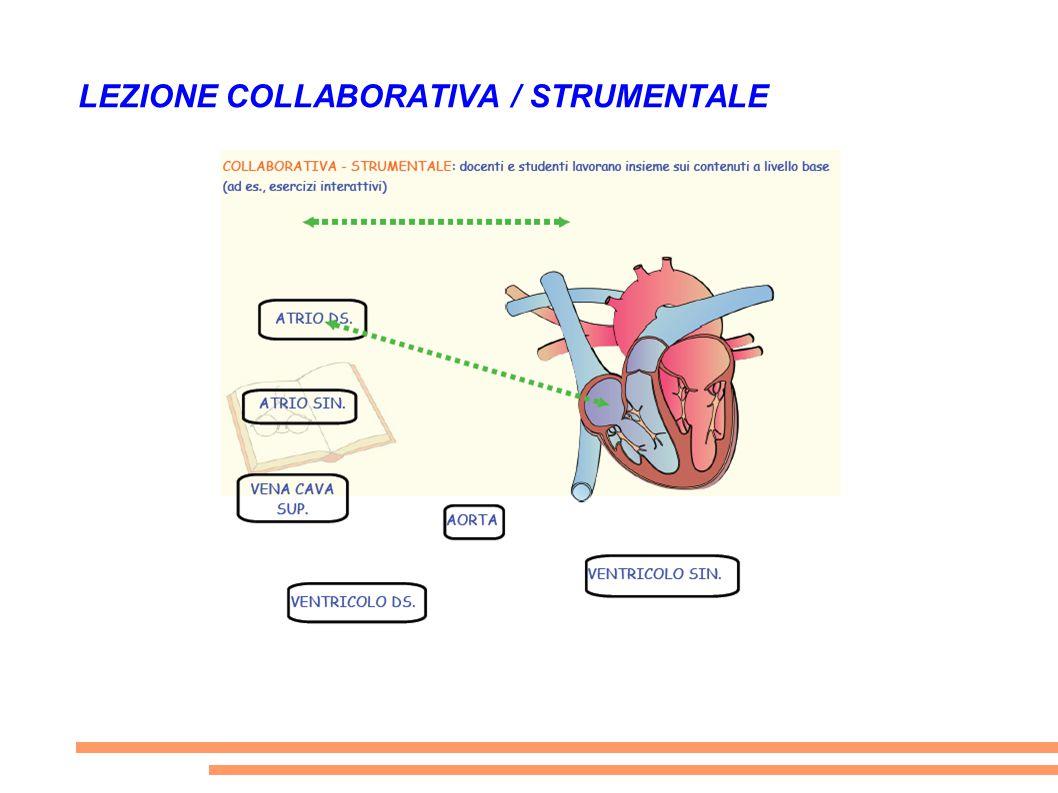 LEZIONE COLLABORATIVA / STRUMENTALE