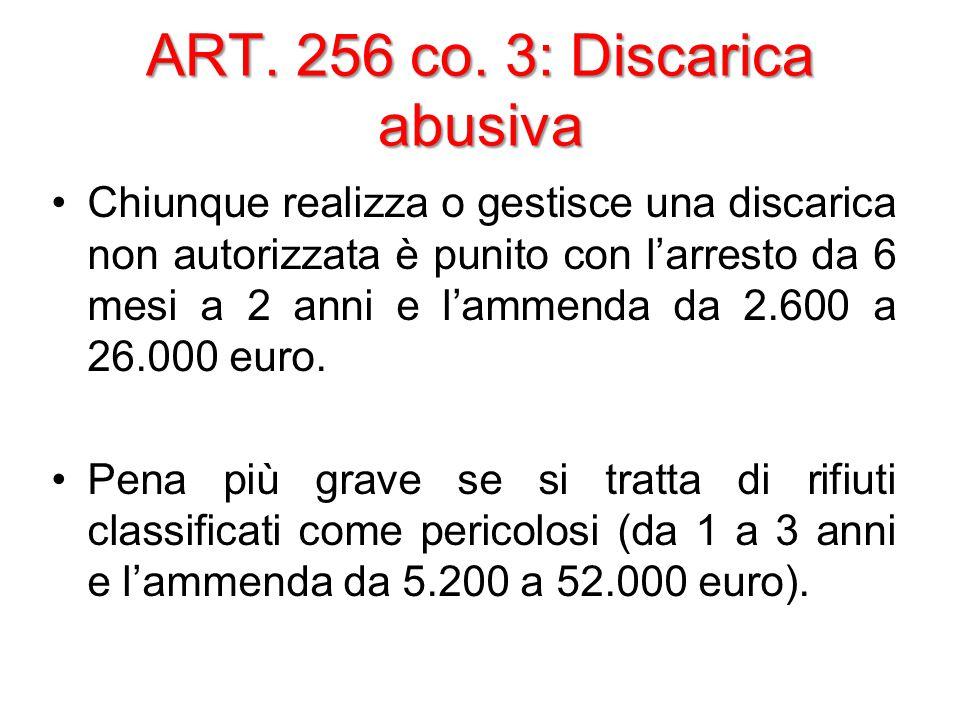 ART. 256 co.