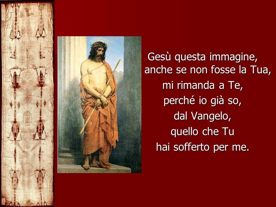 Gesù questa immagine, anche se non fosse la Tua, mi rimanda a Te, perché io già so, dal Vangelo, quello che Tu hai sofferto per me.