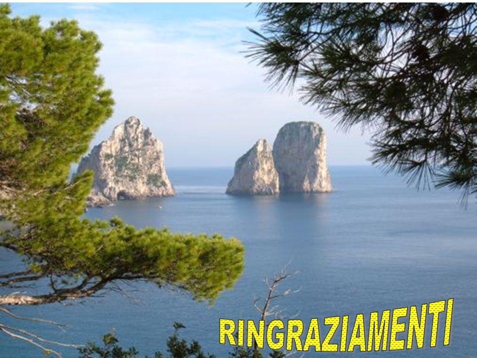 Grazia Gentile g.gentile@aslsalerno.it