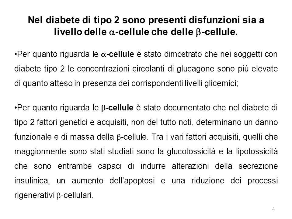 Stimolazione della secrezione insulinica; Riduzione della secrezione di glucagone; Rallentamento dello svuotamento gastrico; Riduzione dell'apoptosi  cellulare; Sensazione di sazietà; Effetti sul metabolismo glucidico del GLP-1 25