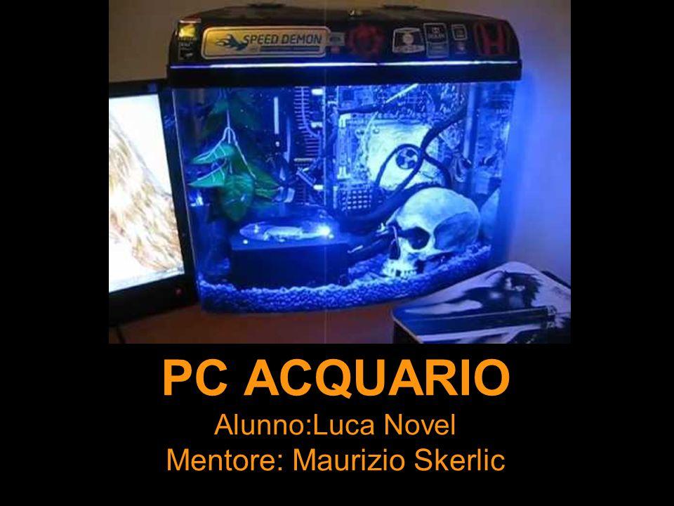 PC ACQUARIO Alunno:Luca Novel Mentore: Maurizio Skerlic