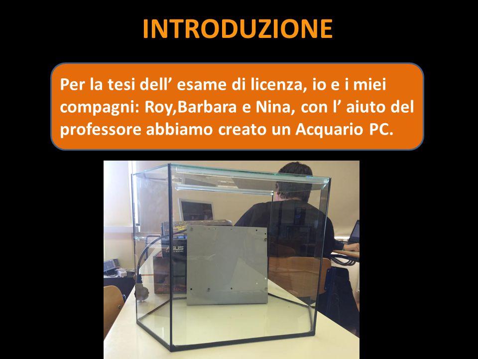 INTRODUZIONE Per la tesi dell' esame di licenza, io e i miei compagni: Roy,Barbara e Nina, con l' aiuto del professore abbiamo creato un Acquario PC.