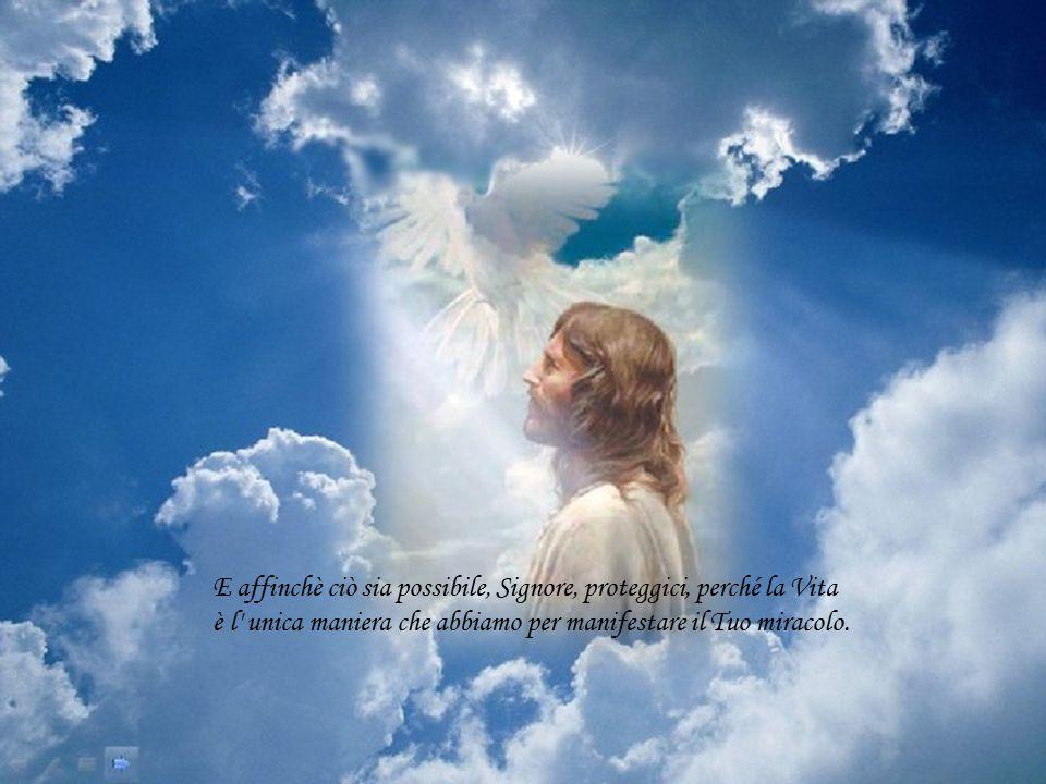 È Lui che ci dice che tutto è possibile, purchè ci impegniamo totalmente in ciò che facciamo.