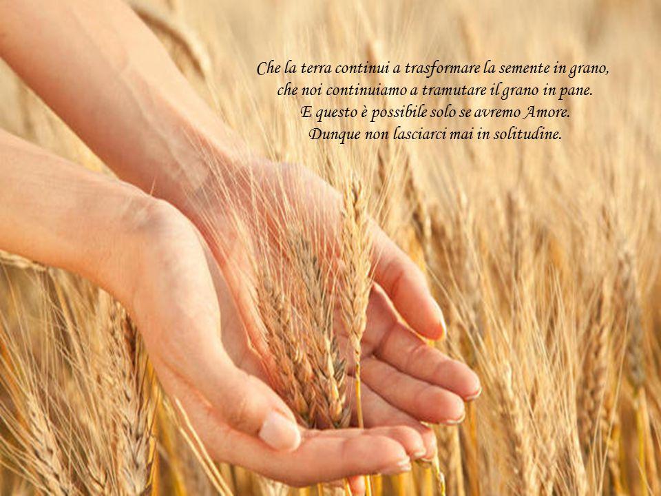E affinchè ciò sia possibile, Signore, proteggici, perché la Vita è l' unica maniera che abbiamo per manifestare il Tuo miracolo.