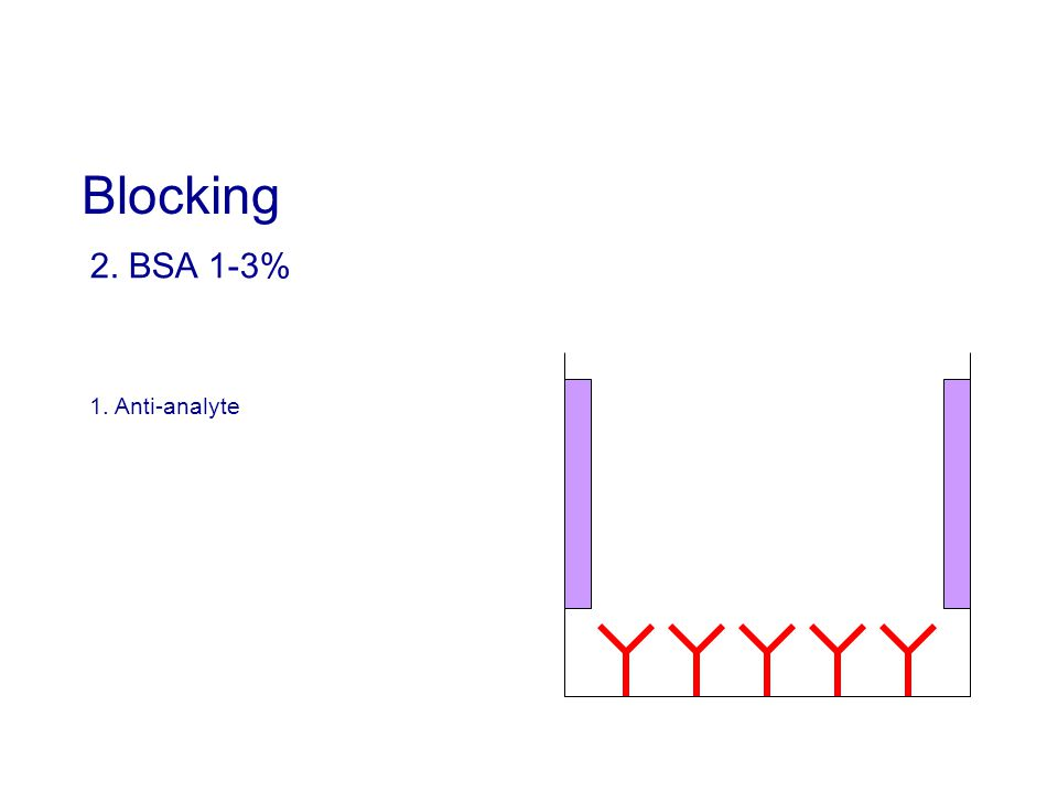 2. BSA 1-3% 1. Anti-analyte Blocking