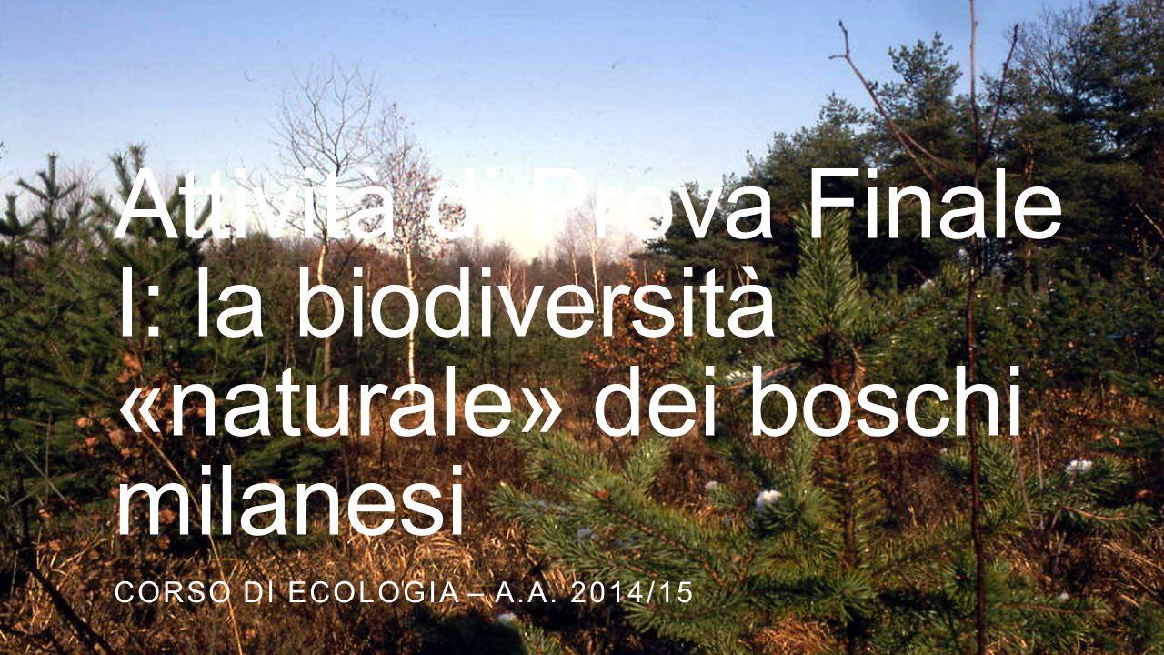 La biodiversità dei parchi urbani di Milano A.A.
