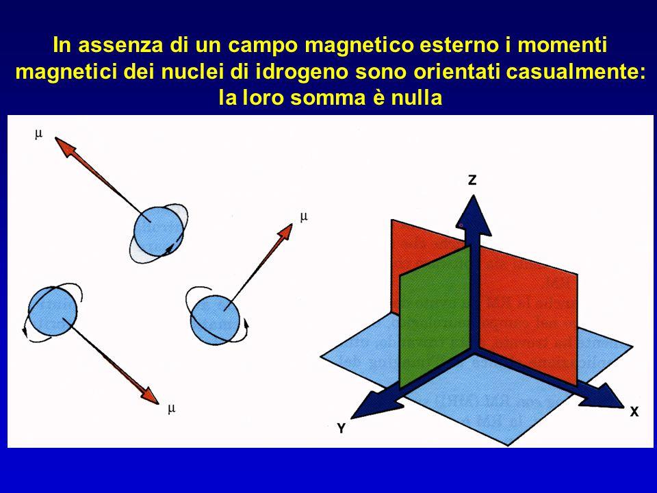 In assenza di un campo magnetico esterno i momenti magnetici dei nuclei di idrogeno sono orientati casualmente: la loro somma è nulla