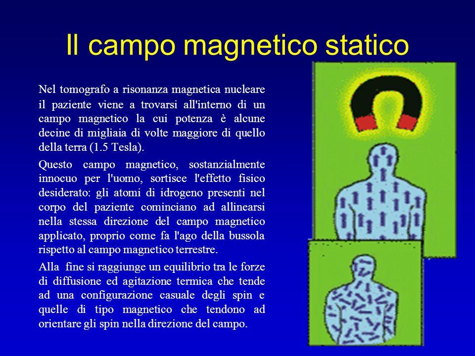Il campo magnetico statico Nel tomografo a risonanza magnetica nucleare il paziente viene a trovarsi all'interno di un campo magnetico la cui potenza