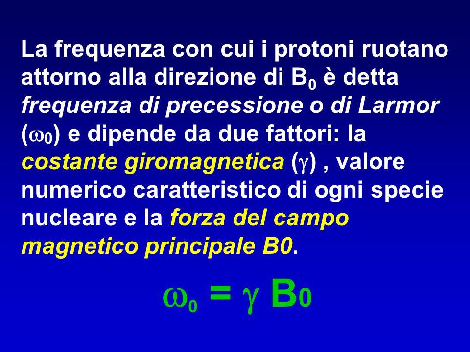 La frequenza con cui i protoni ruotano attorno alla direzione di B 0 è detta frequenza di precessione o di Larmor (  0 ) e dipende da due fattori: la
