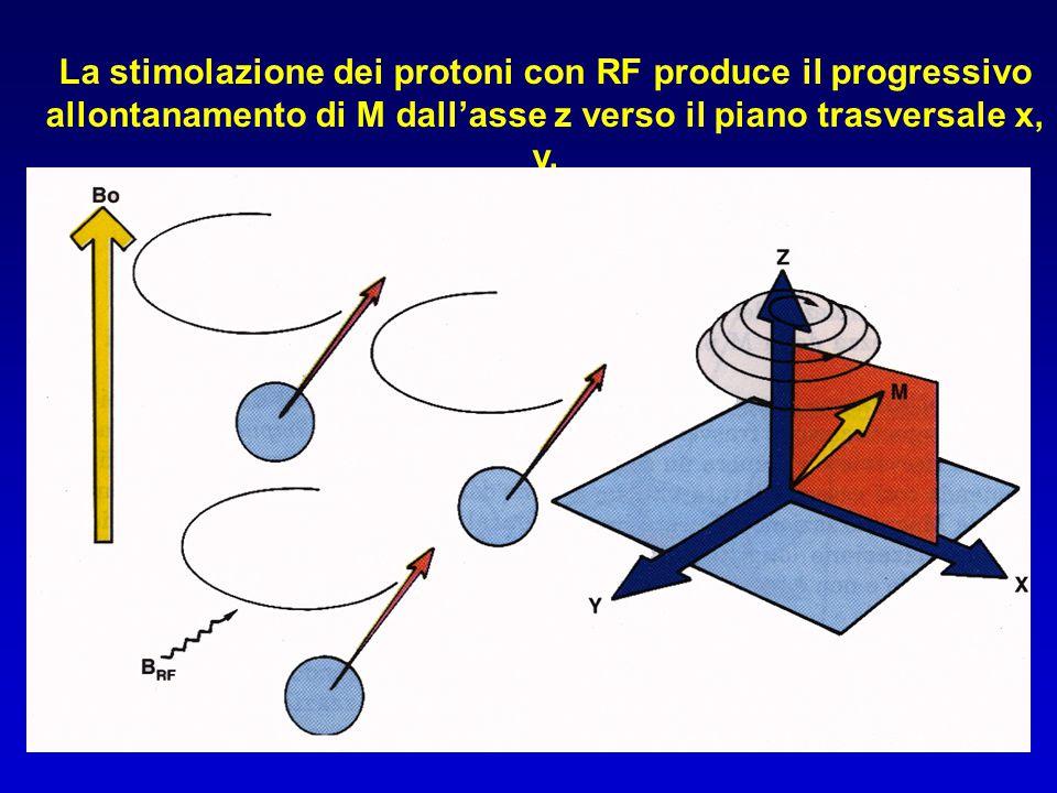 La stimolazione dei protoni con RF produce il progressivo allontanamento di M dall'asse z verso il piano trasversale x, y.