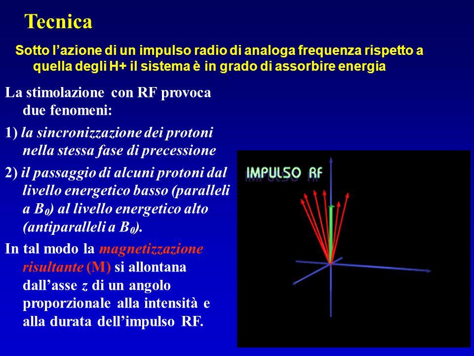Sotto l'azione di un impulso radio di analoga frequenza rispetto a quella degli H+ il sistema è in grado di assorbire energia La stimolazione con RF p