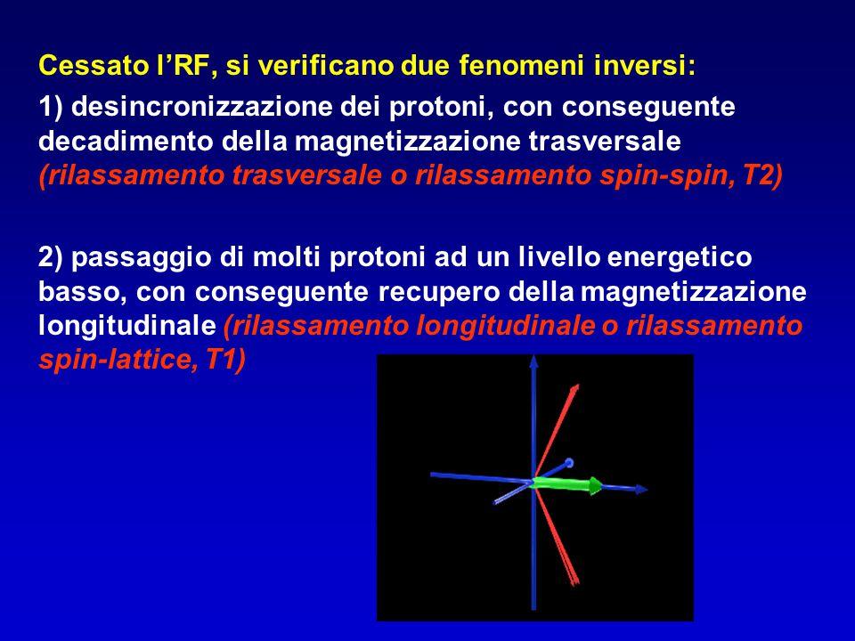 Cessato l'RF, si verificano due fenomeni inversi: 1) desincronizzazione dei protoni, con conseguente decadimento della magnetizzazione trasversale (ri