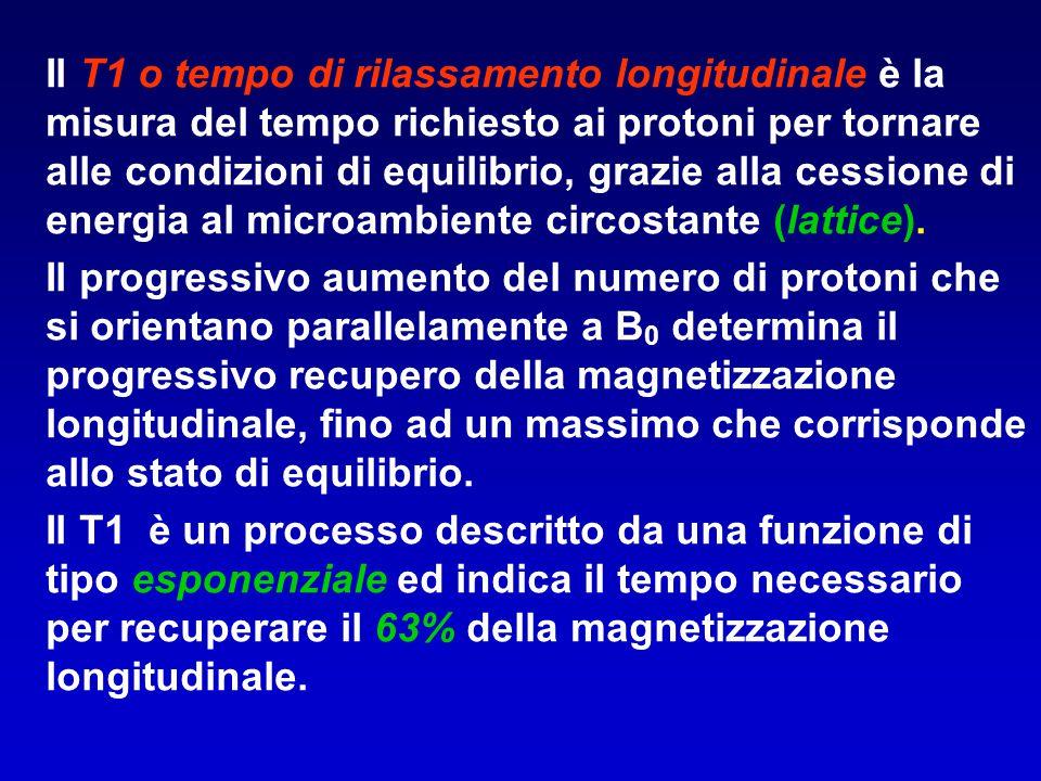 Il T1 o tempo di rilassamento longitudinale è la misura del tempo richiesto ai protoni per tornare alle condizioni di equilibrio, grazie alla cessione