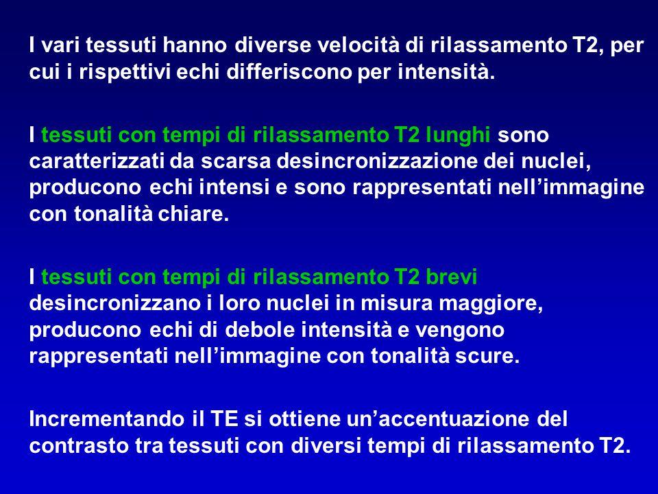 I vari tessuti hanno diverse velocità di rilassamento T2, per cui i rispettivi echi differiscono per intensità. I tessuti con tempi di rilassamento T2