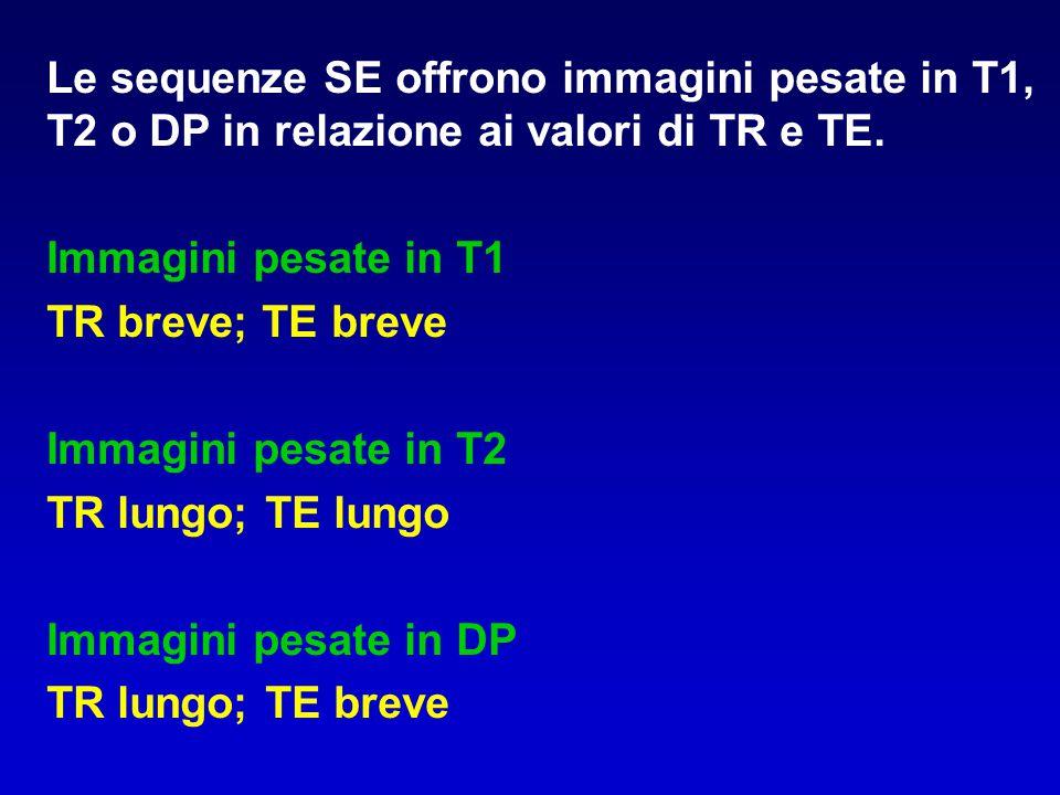 Le sequenze SE offrono immagini pesate in T1, T2 o DP in relazione ai valori di TR e TE. Immagini pesate in T1 TR breve; TE breve Immagini pesate in T