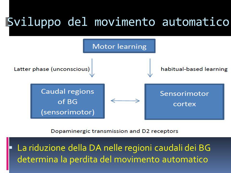 Sviluppo del movimento automatico  La riduzione della DA nelle regioni caudali dei BG determina la perdita del movimento automatico