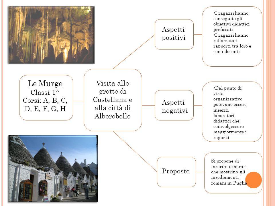 Vi Verona, Padova, Ville Venete, Ferrara Classi 3^ Corsi: A, B, G, H Visita ai principali luoghi d'interesse storico- culturale Aspetti positivi Aspet