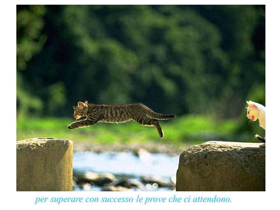 per superare con successo le prove che ci attendono.