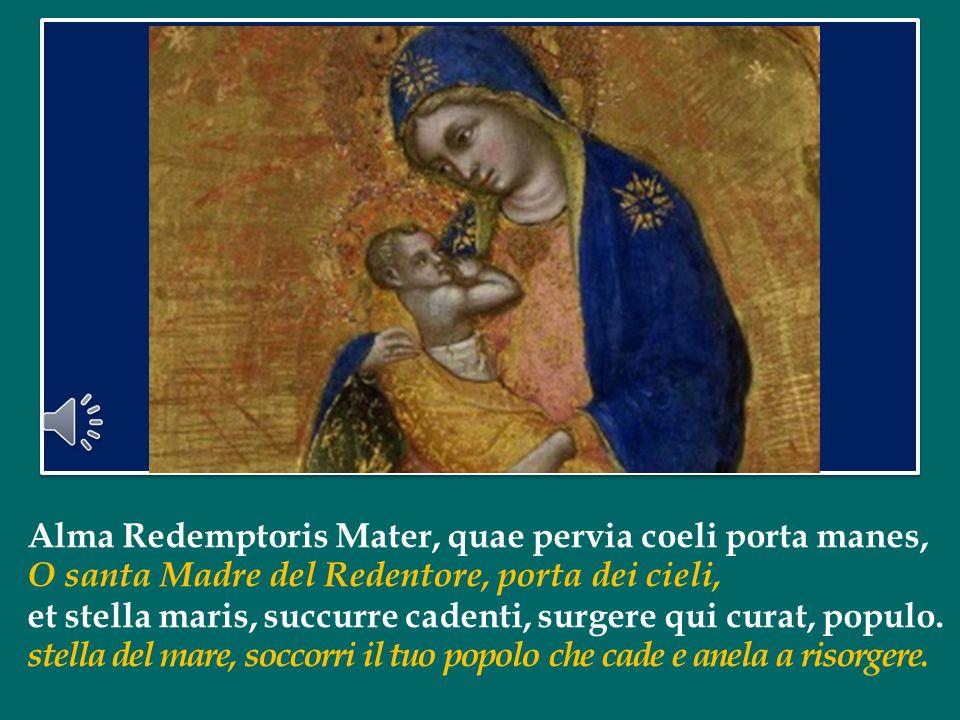 """La Vergine Maria è la """"via"""" che Dio stesso si è preparato per venire nel mondo. Affidiamo a Lei l'attesa di salvezza e di pace di tutti gli uomini e l"""