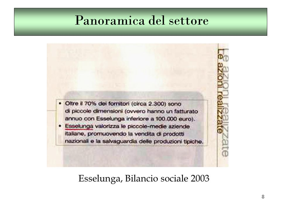 8 Esselunga, Bilancio sociale 2003 Panoramica del settore
