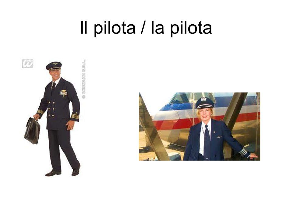 Il pilota / la pilota