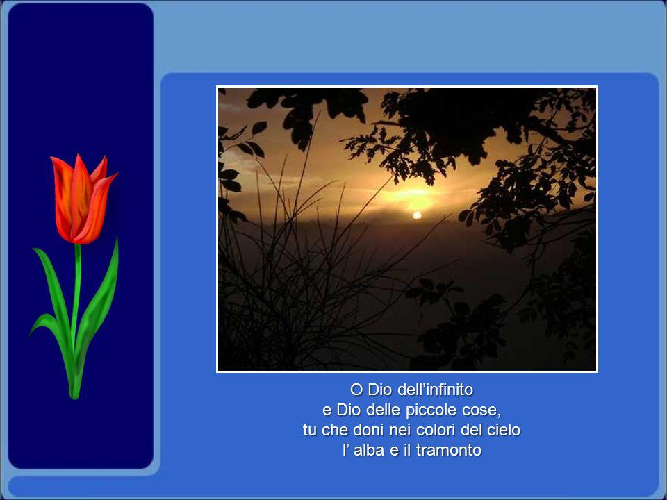 O Dio dell'infinito e Dio delle piccole cose, tu che doni nei colori del cielo l' alba e il tramonto