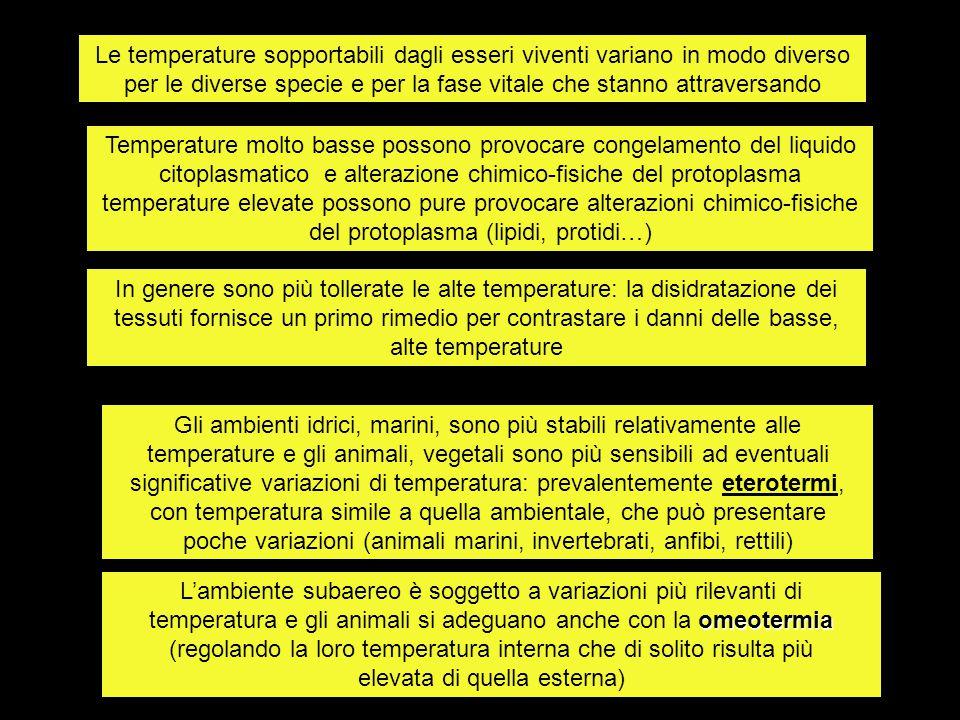 Stenotermi : vivono entro ristretto ambito di temperature Euritermi: vivono entro ampio ambito di temperature Individui, animali e vegetali, esigono temperature differenziate per una esistenza ottimale: possono sopportare variazioni di temperatura più o meno rilevanti in funzione della specie