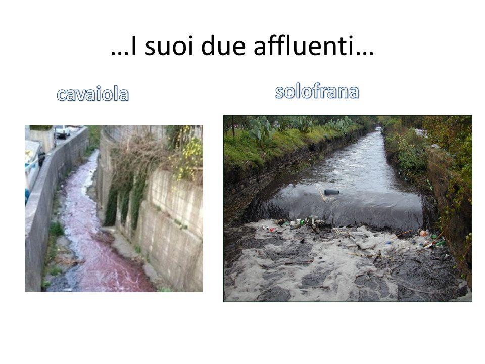 … lo inquinano Le concerie di Solofra Le fabbriche di pomodoro immettono nel fiume scorie inquinanti.