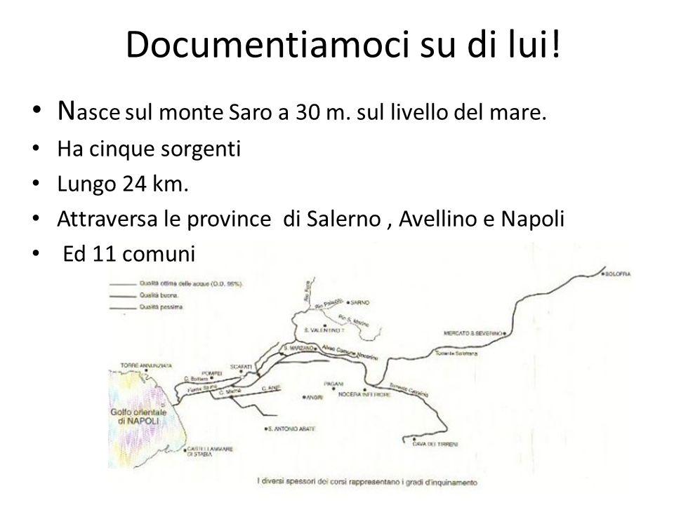 Documentiamoci su di lui! N asce sul monte Saro a 30 m. sul livello del mare. Ha cinque sorgenti Lungo 24 km. Attraversa le province di Salerno, Avell