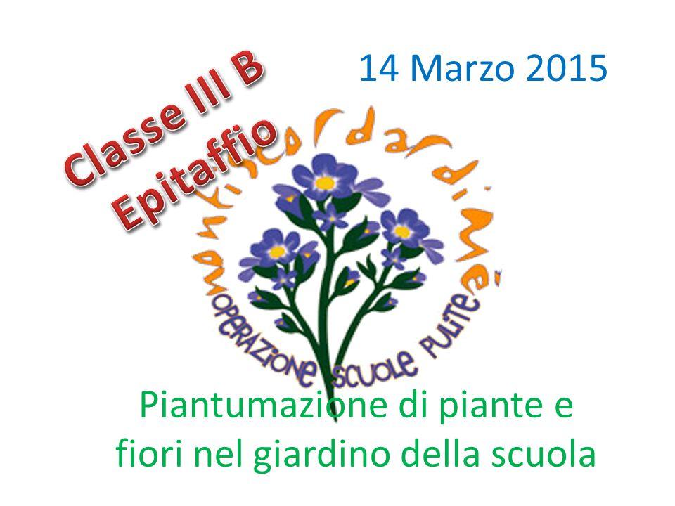 14 Marzo 2015 Piantumazione di piante e fiori nel giardino della scuola