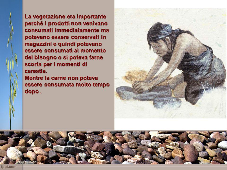 La vegetazione era importante perché i prodotti non venivano consumati immediatamente ma potevano essere conservati in magazzini e quindi potevano essere consumati al momento del bisogno o si poteva farne scorta per i momenti di carestia.