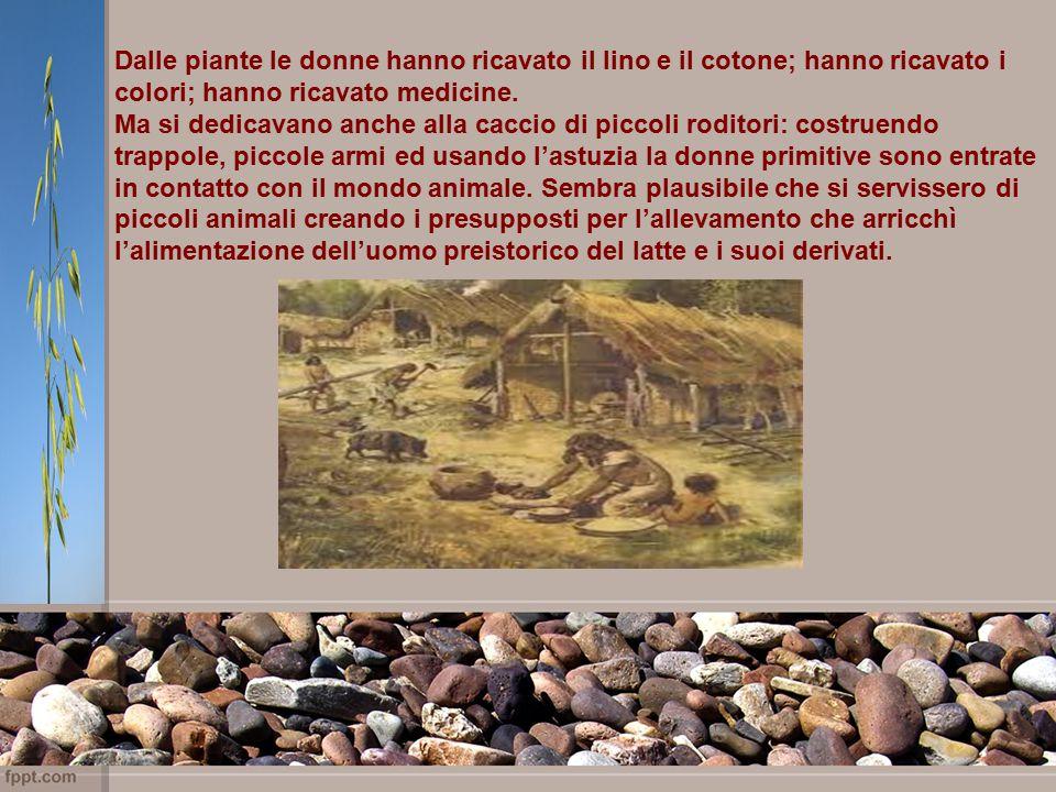 Dalle piante le donne hanno ricavato il lino e il cotone; hanno ricavato i colori; hanno ricavato medicine.