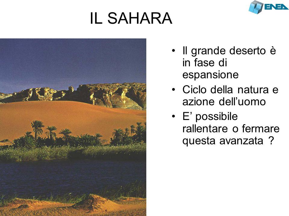 IL SAHARA Il grande deserto è in fase di espansione Ciclo della natura e azione dell'uomo E' possibile rallentare o fermare questa avanzata ?