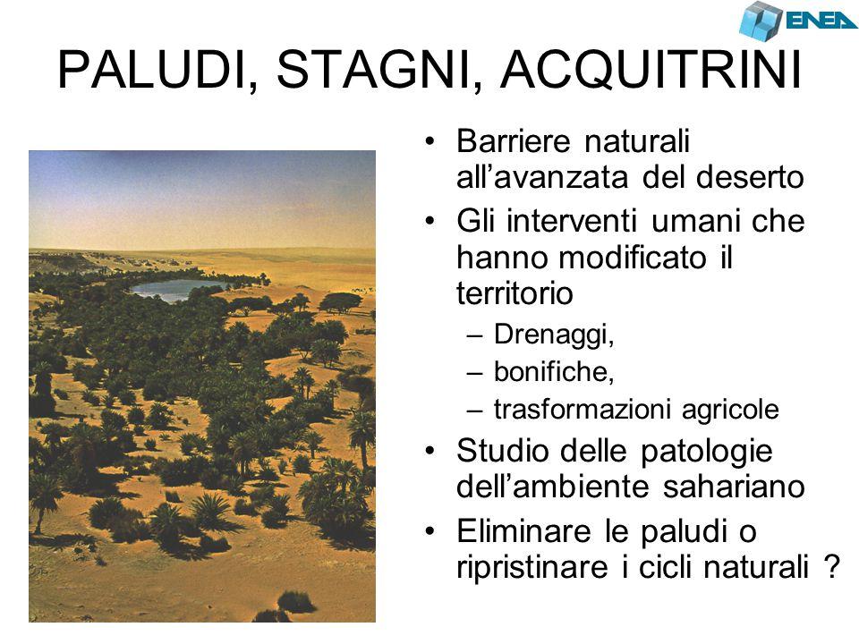 PALUDI, STAGNI, ACQUITRINI Barriere naturali all'avanzata del deserto Gli interventi umani che hanno modificato il territorio –Drenaggi, –bonifiche, –