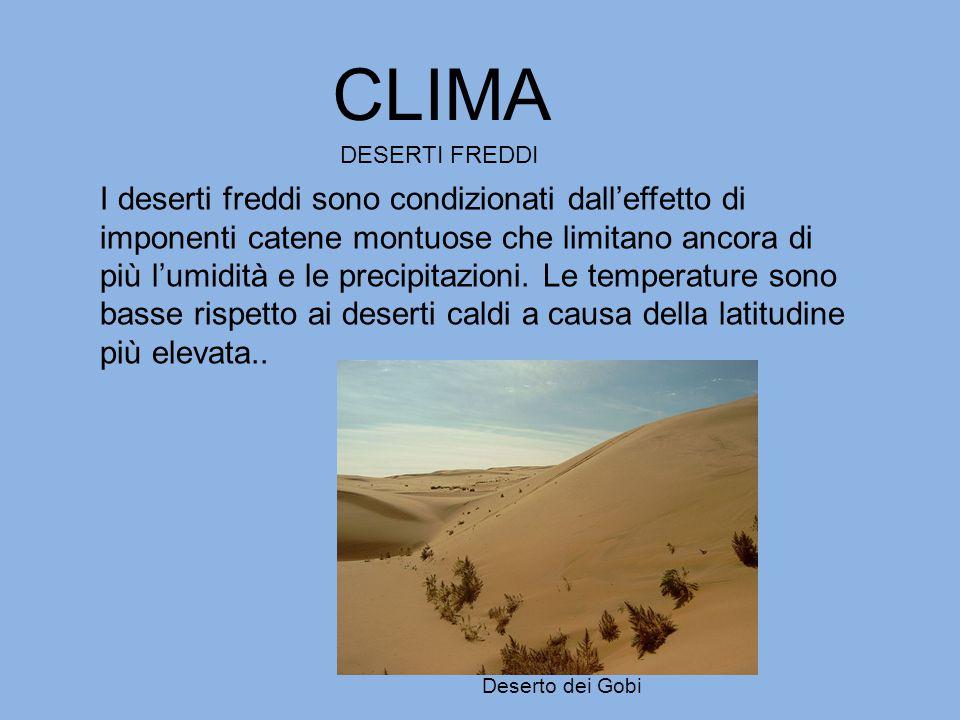 CLIMA DESERTI FREDDI I deserti freddi sono condizionati dall'effetto di imponenti catene montuose che limitano ancora di più l'umidità e le precipitaz
