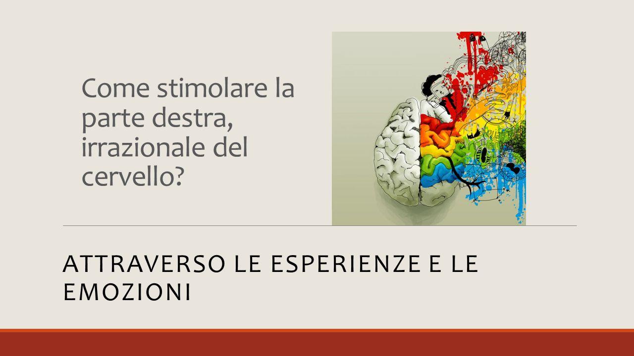 Come stimolare la parte destra, irrazionale del cervello? ATTRAVERSO LE ESPERIENZE E LE EMOZIONI